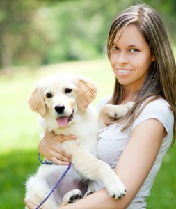finding your puppy - are you ready for a dog