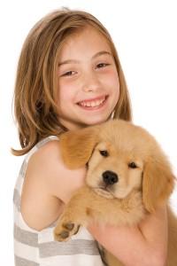 introducing-puppy-to-children