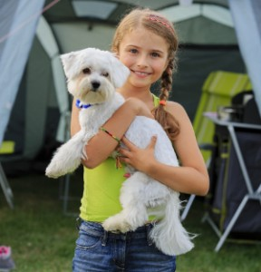 Summer in the tent - young girl playing with dog on the camping