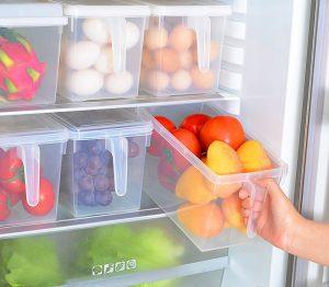 fridge containers