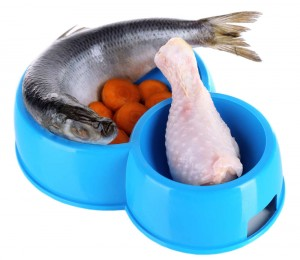 fish is a great raw food for dogs
