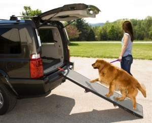 Dog Ramp To Get In And Out Of Cars