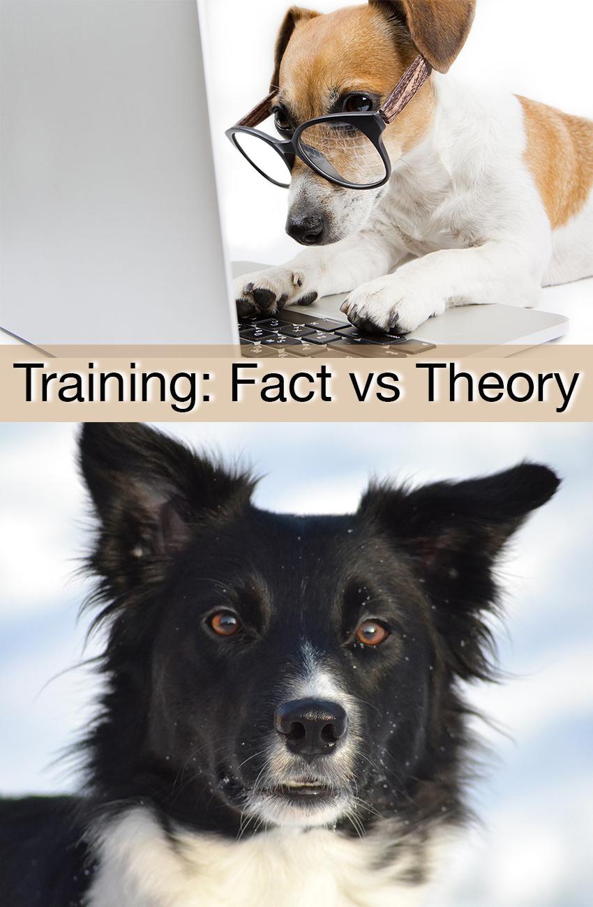 fact-theory