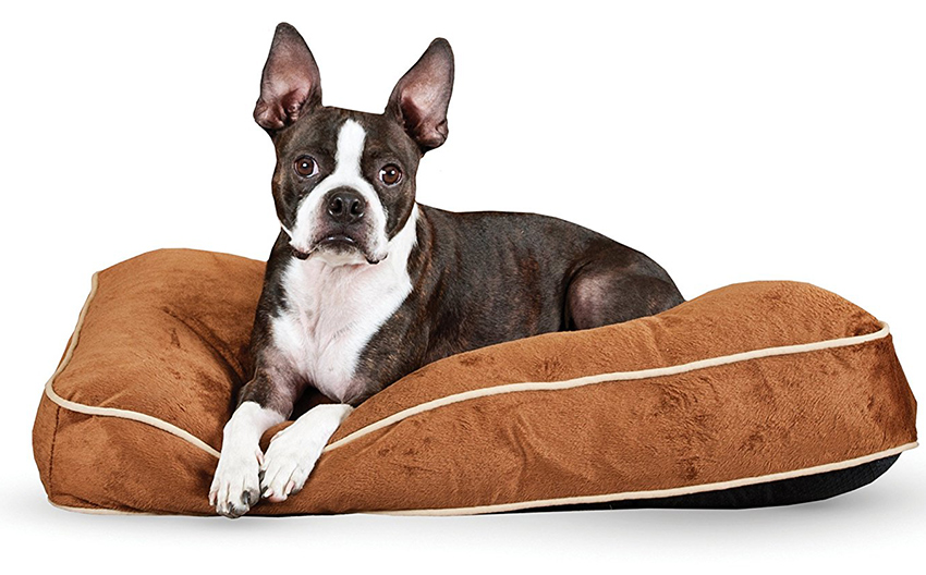 best puppy beds