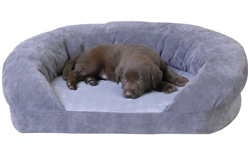 luxury puppy bed