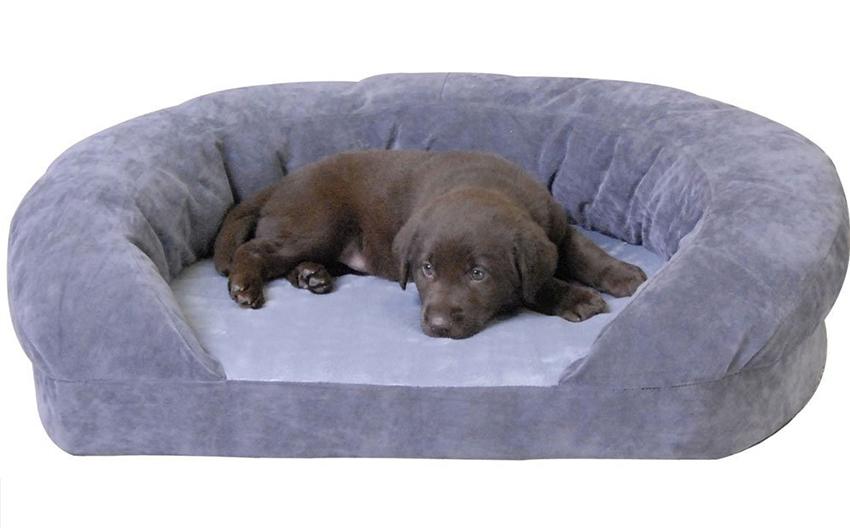 luxury puppy bed