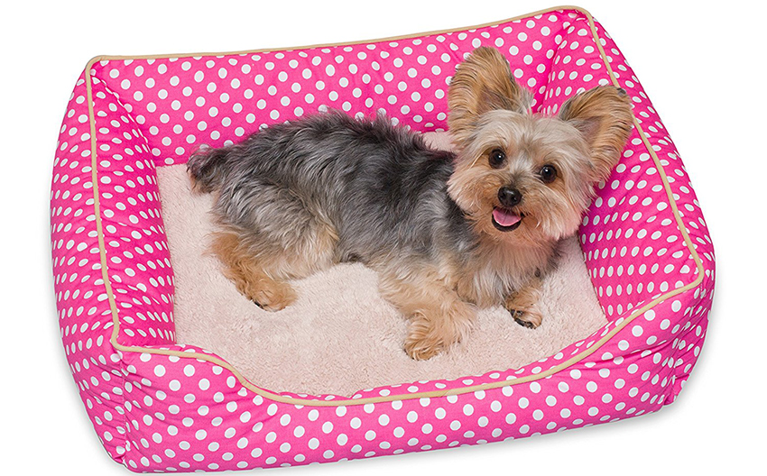 puppy beds for small dogs