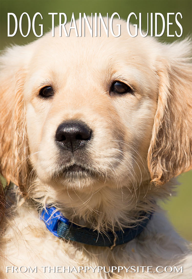 A collection of free dog training guides from best selling author Pippa Mattinson, including clear and detailed dog training lessons and exercises.