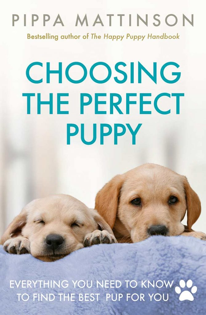 Choosing the Perfect Puppy Book Cover