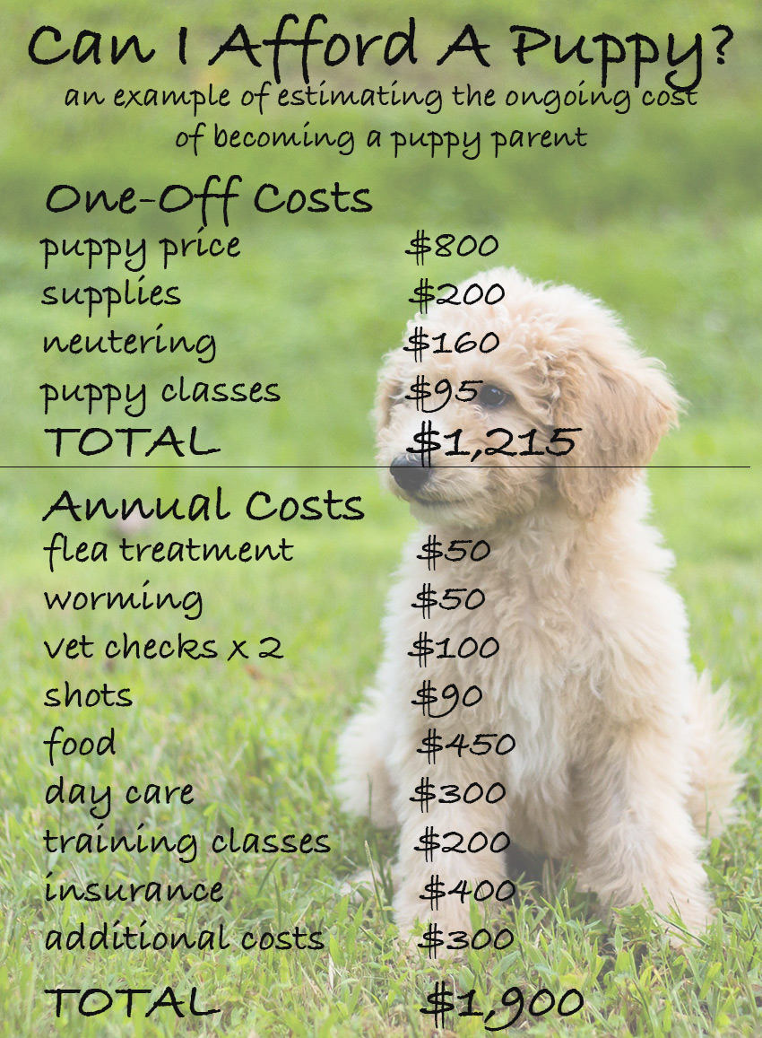 how much does a dog cost