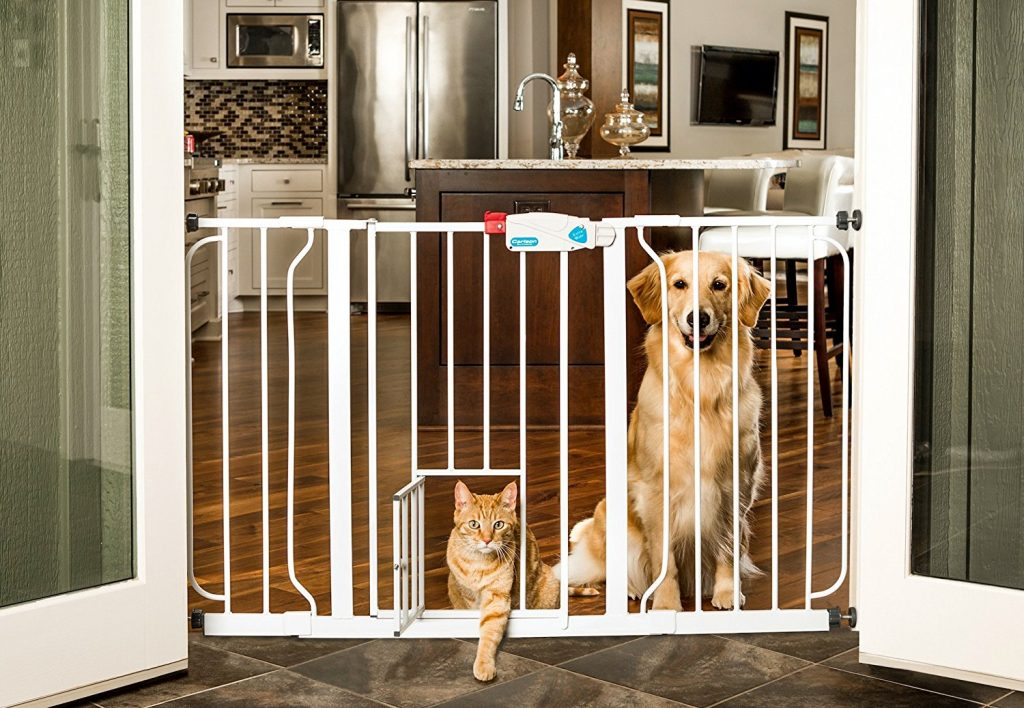 baby gates for cats and dogs