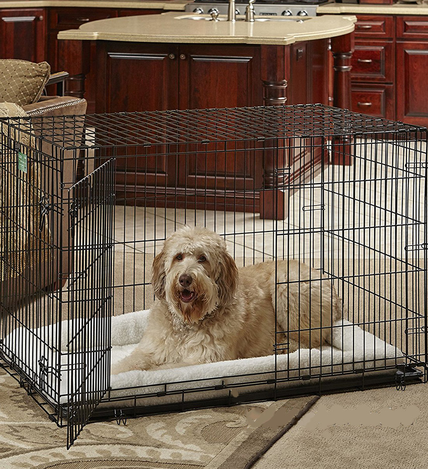 Dog Supply Costs - dog crates