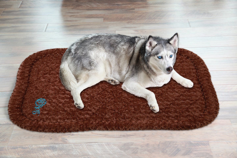 Dog Proof Dog Bed