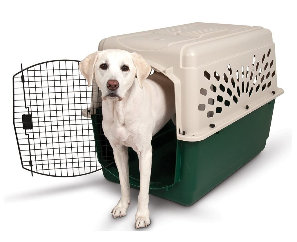 Your Ultimate Expert Guide To Crate Training A Puppy