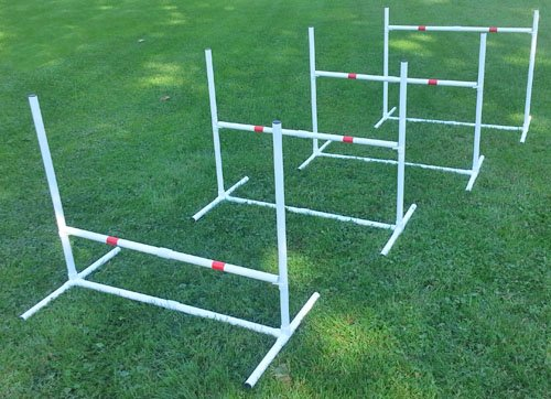 Agility for dogs jumps