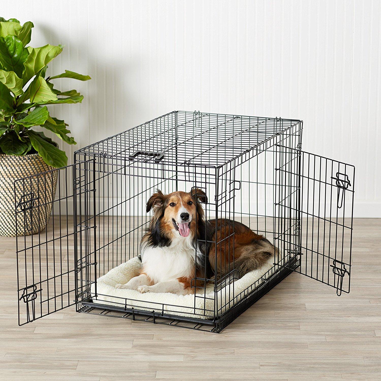 Best Puppy Crates - Amazon Basics Range