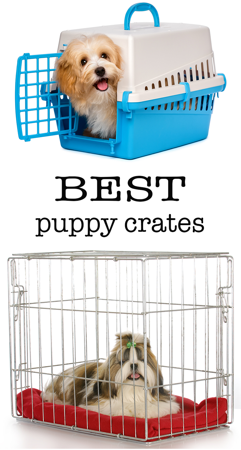 Best Puppy Crates - Top Tips and Crate Reviews
