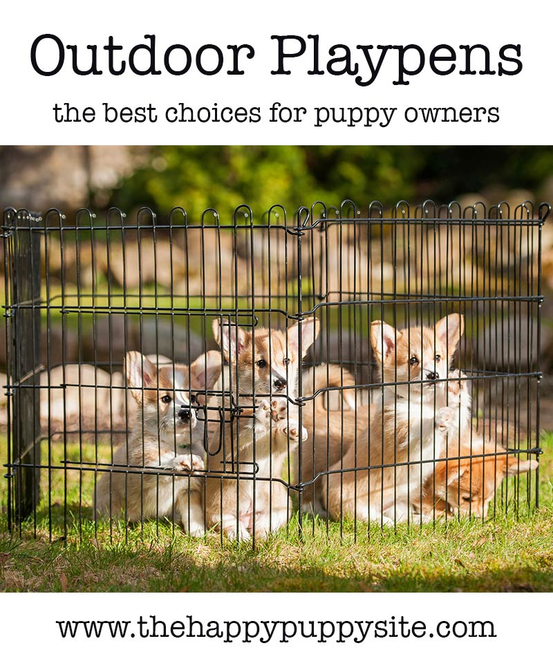Best Outdoor Puppy Playpens