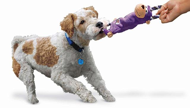 Kong Dog Toys - Tugger