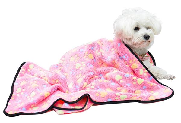 dog blanket pink