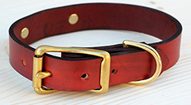 customer collar with nameplate