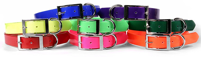 best personalized nylon dog collar