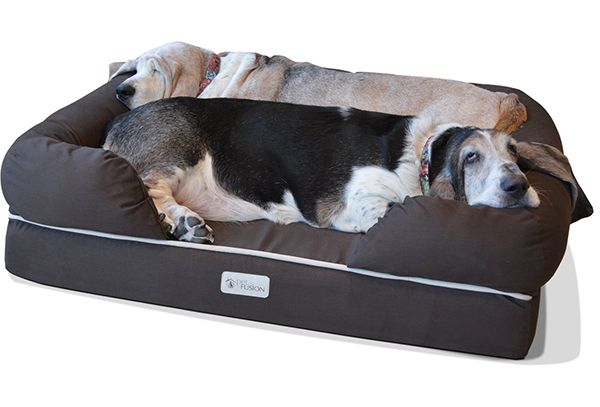 Dog House Shaped Pet Bed With Moon