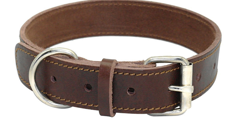 thick leather dog collar