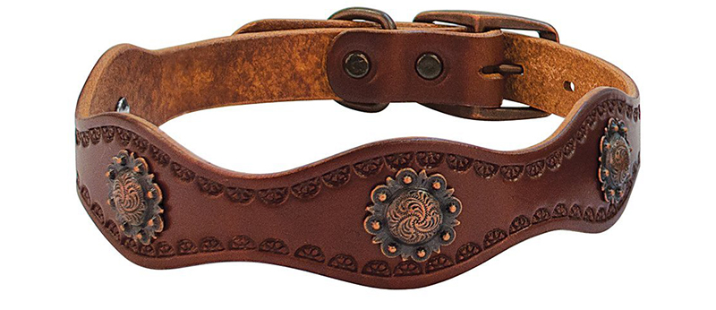 western leather dog collar