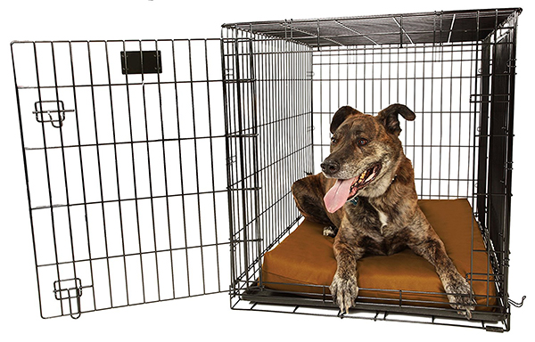 dog bed for crate