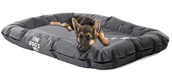 reviews of the best dog beds for extreme chew