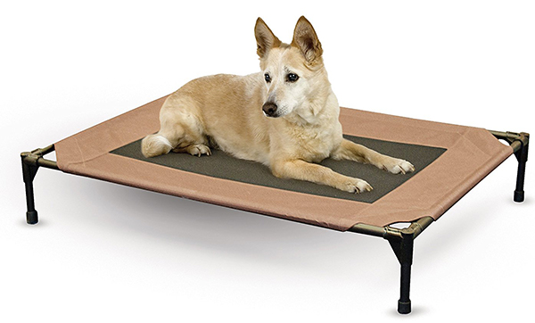 Reviews Of The Best Indestructible Dog Beds For Extreme