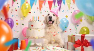 Dog Birthday Cake Recipes For Your Pup's Special Day