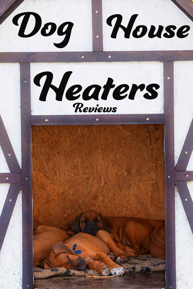 Dog house heaters reviewed - Great products for your dog.