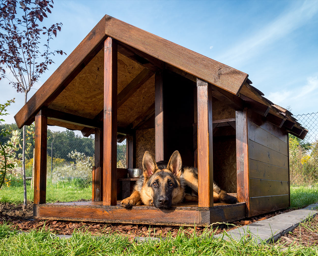 Indoor And Outdoor Dog House Heater