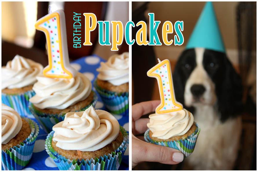 Awe Inspiring Dog Cupcake Recipes From Super Simple To Uniquely Fabulous Personalised Birthday Cards Akebfashionlily Jamesorg