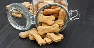 Your Dog Food Container Guide
