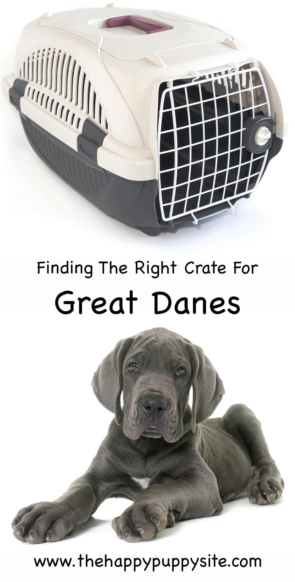 great dane crates
