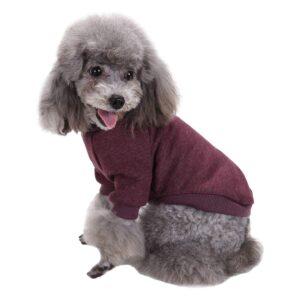 yorkie sweater