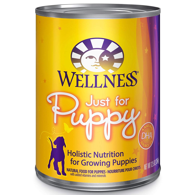 best food for pomeranian puppy