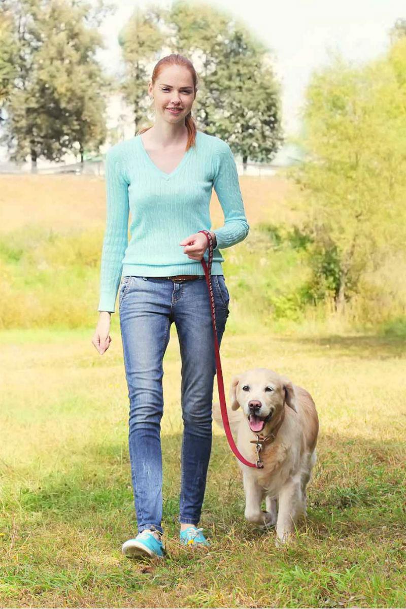 loose leash walking