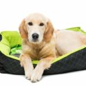 Best Dog Beds for Golden Retrievers to Keep Your Pup Comfortable