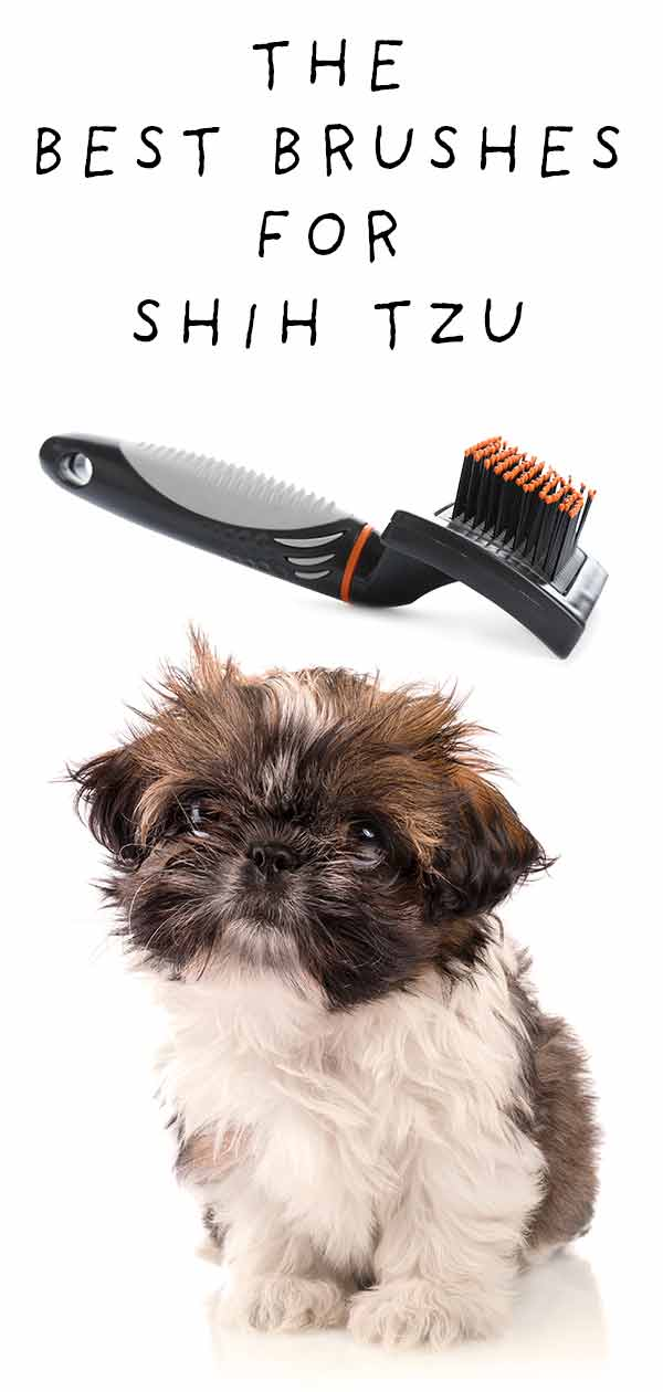 best brush for shih tzu