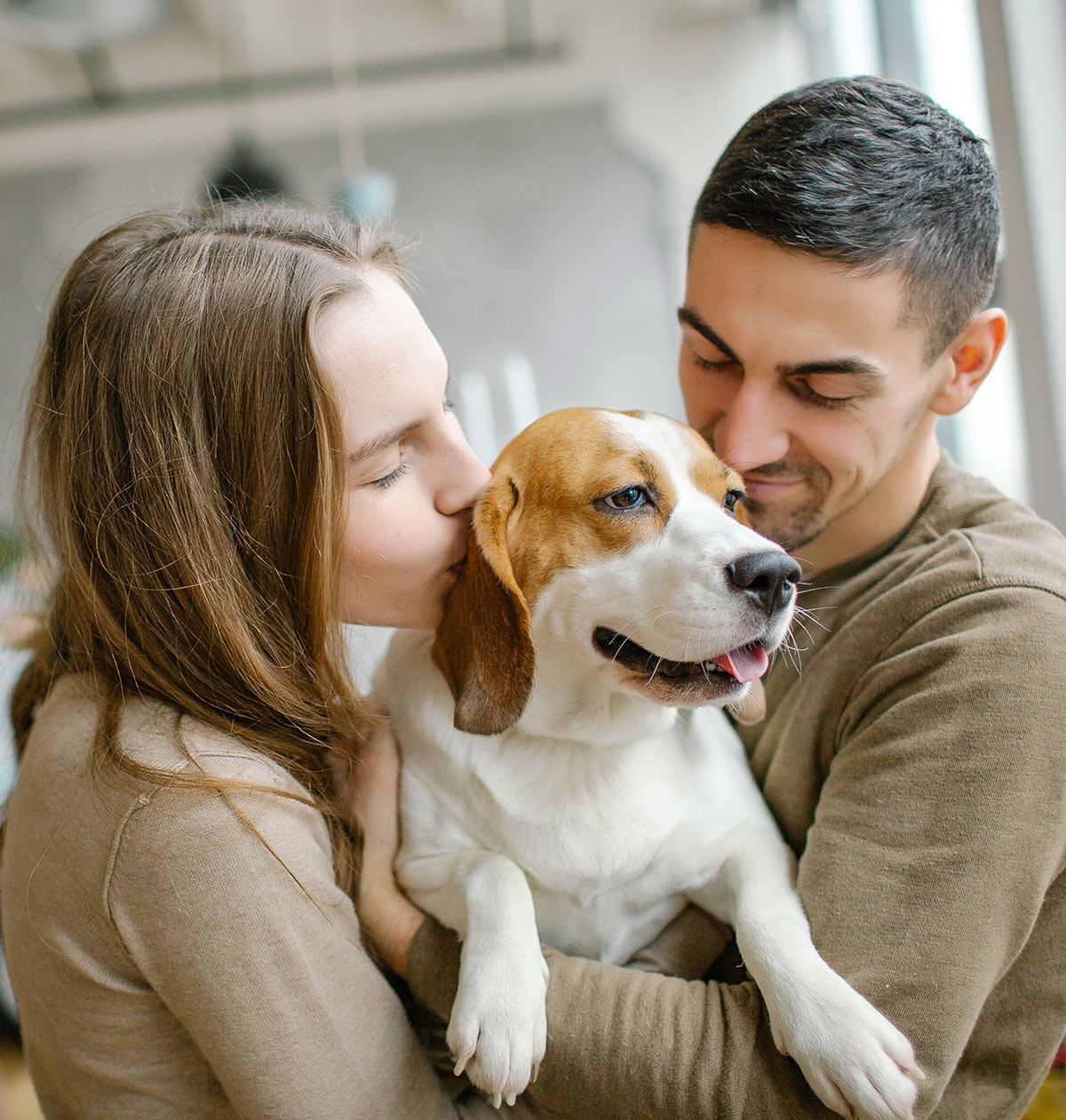 are beagles good family dogs