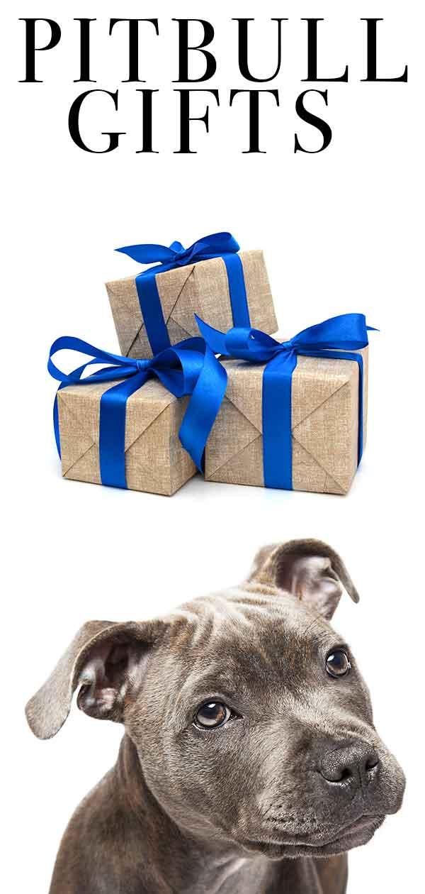 pitbull gifts