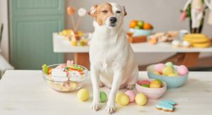 Dog Easter Egg Hunt – How To Have The Best Easter Ever