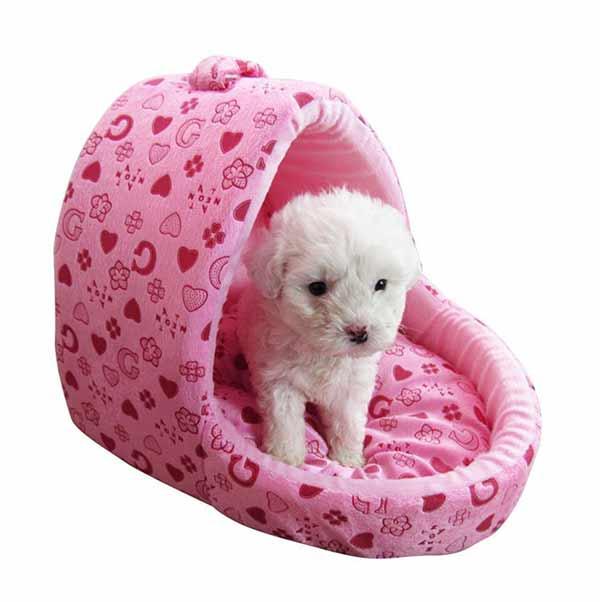 white puppy in a pink basket