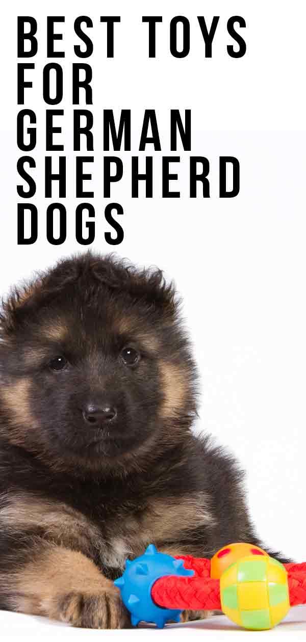 best german shepherd toys