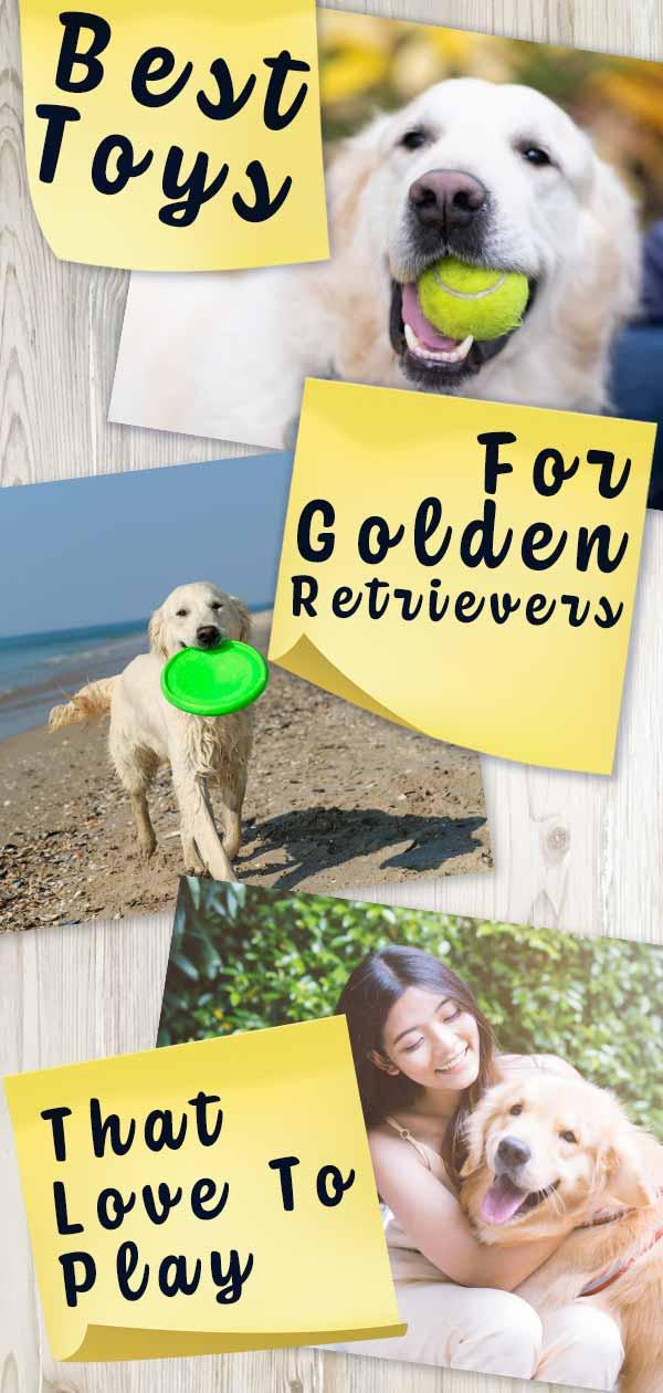 best toys for golden retrievers