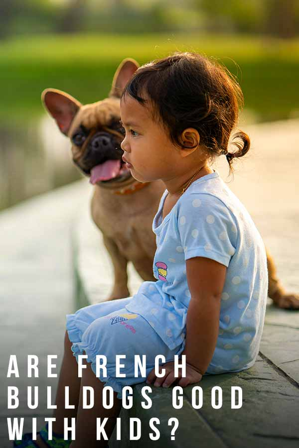 are french bulldogs good with kids
